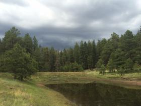 A monsoon storm rolls into the Dry Lake Hills north of Flagstaff. The popular local hiking and mountain biking area will likely be the location of a heavy forest thinning project over the next several years.