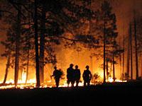 Warm Fire, 25 June 2006, night shift, photo by Misty Seagle, Great Smokey Mountains Natl Park