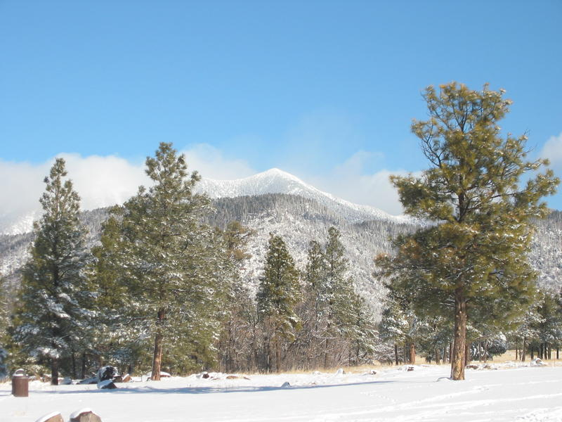 The snow-capped San Francisco Peaks north of Flagstaff, sacred mountain to the Hopi, Navajo and other tribes, and home to the Arizona Snowbowl ski area.