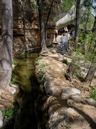 The short trail to the outlet of Montezuma's Well follows the path of a 1,000 year old irrigation ditch.