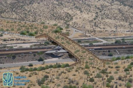 An artist?s rendering of proposed Tucson-Tortolita-Santa Catalina wildlife overpass crossing structure in Pima County.