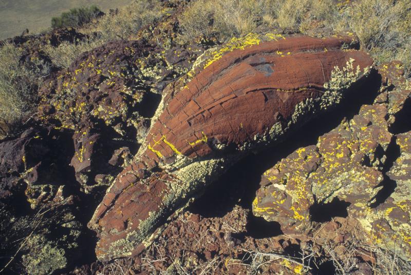 S.P Crater Volcanic Bomb