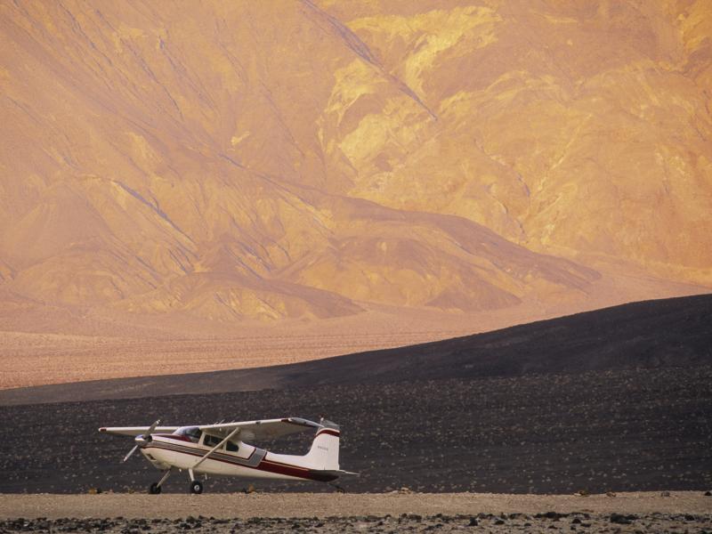 Buzzard at Saline Valley