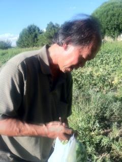 Fred Wong on his farm in Camp Verde.
