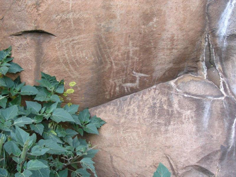Most petroglyphs in Picture Canyon date back around 1,000 years, and are believed to be the remnants of Flagstaff's first inhabitants.