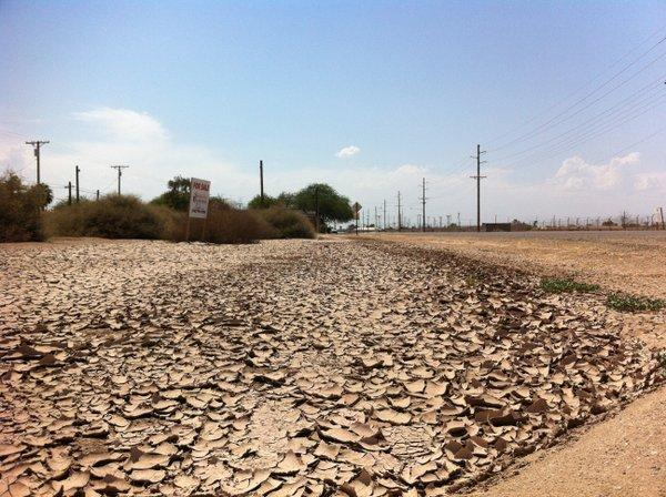 Effects of drought in Imperial County, Calif.