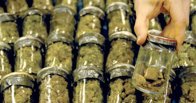 http://azmarijuana.com/