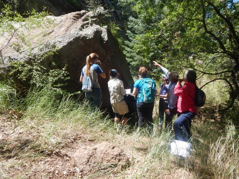 Larry Stevens guides volunteers through plant identification