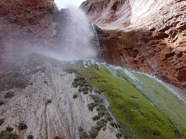 Chute Grand Canyon national survey shows americans value grand canyon springs | knau