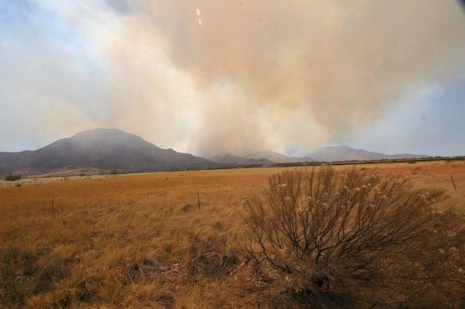 The Wallow Fire burns in the distance