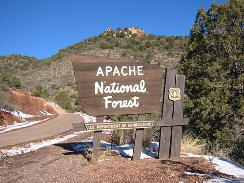 Image result for Apache-Sitgreaves National Forests patch