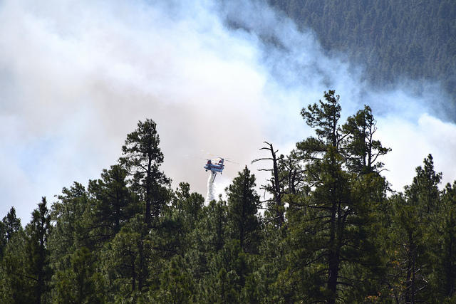 Arizona Forest Fire Marks Start of Southwest's Wildfire Season