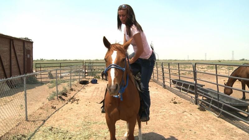 Swinging up on Scarlet. Even rescued horses can make wonderful pets or riding companions.