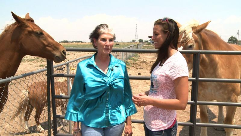 Ramona Foxworth and I visit about her horse sanctuary