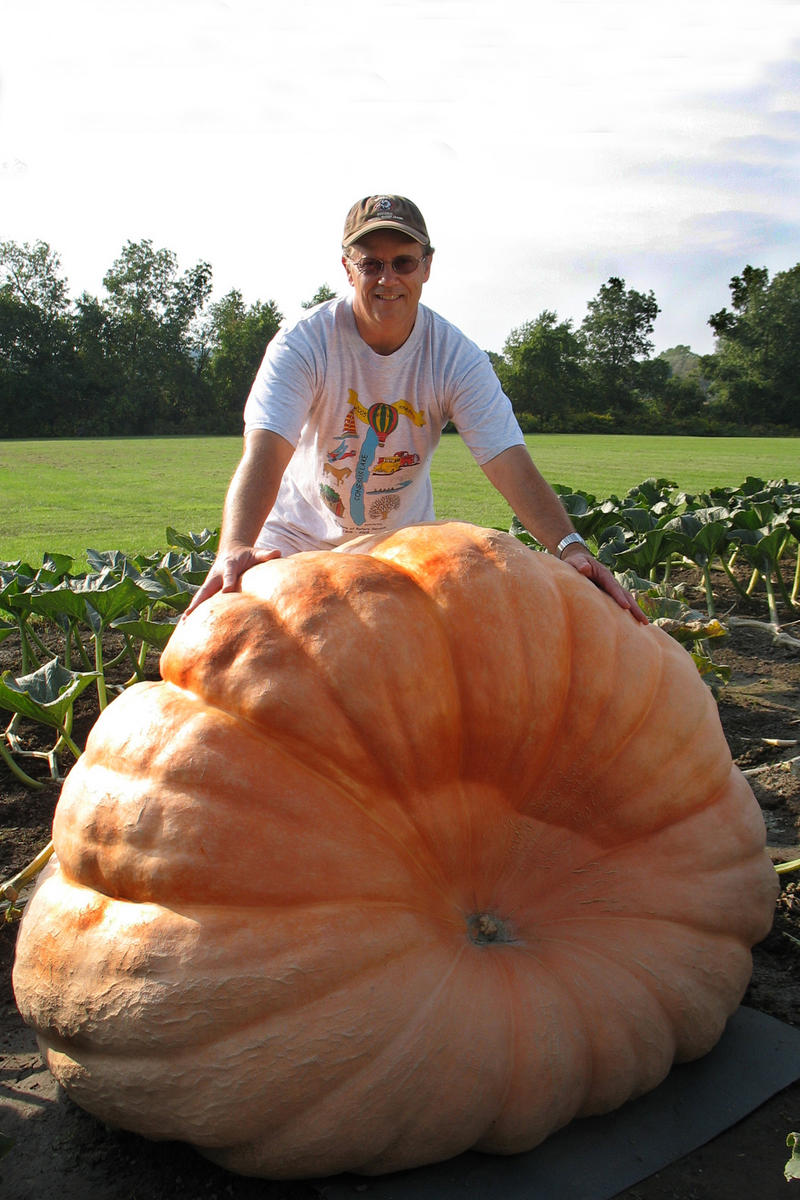 In Lords of the Gourd, competitor Joe Pukos with his giant pumpkin.