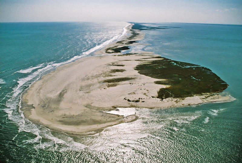 These are the wild beaches of Cape Lookout - one of the few remaining natural barrier islands in the world.