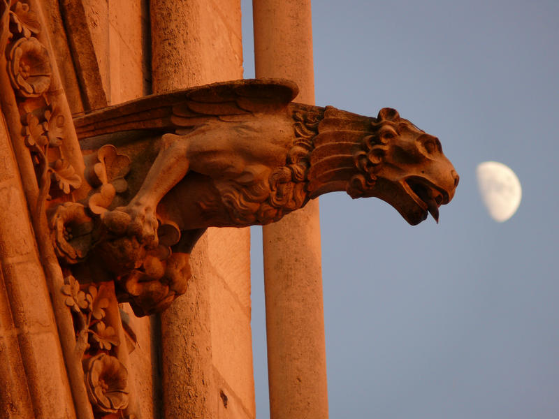 Pictured: Gargoyle on Amiens Cathedral