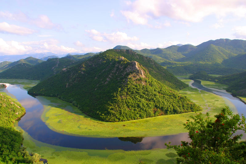 Lake Skadar is the largest lake at Balkan Peninsula, famous for its diversity of flora and fauna.