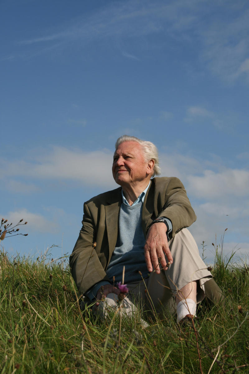 David Attenborough on hillside in UK