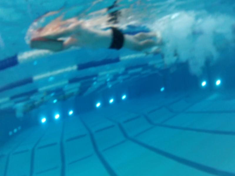 The triathlon club practices swimming.