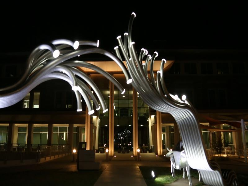Texas Tech Public Art Program.
