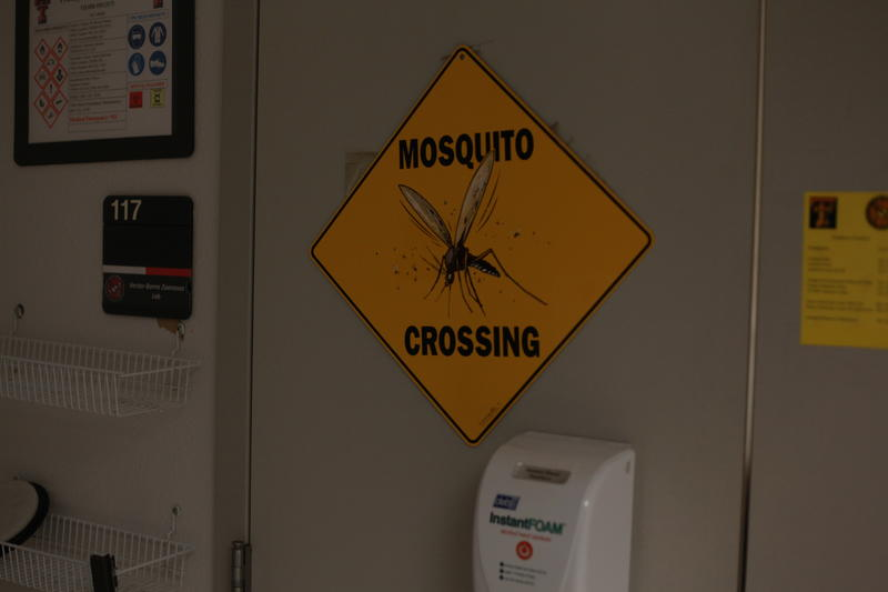 Mosquito crossing sign.