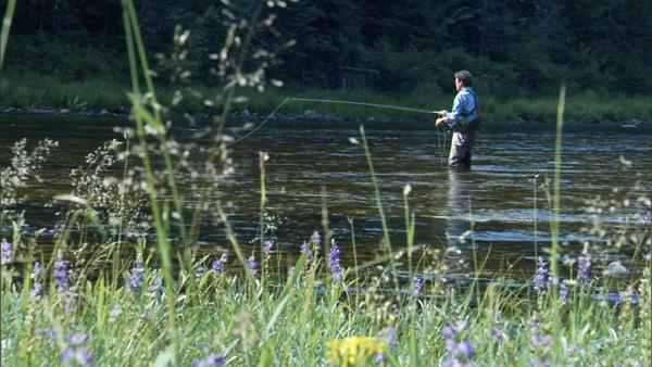 Author David Duncan fly fishing on the Upper Lochsha River, Montana.