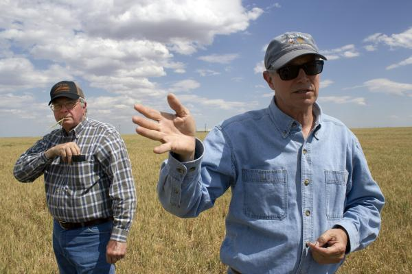 Brothers and business partners Fred and Wayne Schmedt stand in their family's wheat field near Altus in southwest Oklahoma.