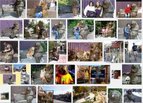 A screenshot of 'Franz the Bear' photos on Google Images.
