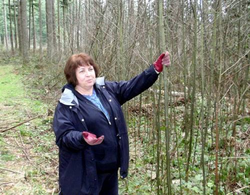 Carol Wick contemplates the possibilities for her woodlot near Enumclaw