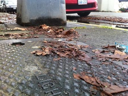 The base of a metal streetlight and City Light metal vault cover on 5th Avenue in Belltown. After a dog was electrocuted last month through a plate and light conveying voltage, the city is inspecting 20,000 lights and connections.