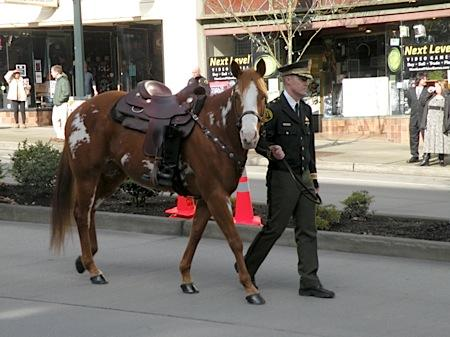An officer leads a riderless horse as part of the memorial procession for Corrections Officer Jayme Biendl. In military tradition, the riderless horse, with empty boots mounted backwards in the stirrups, signifies a rider who will not be coming home.
