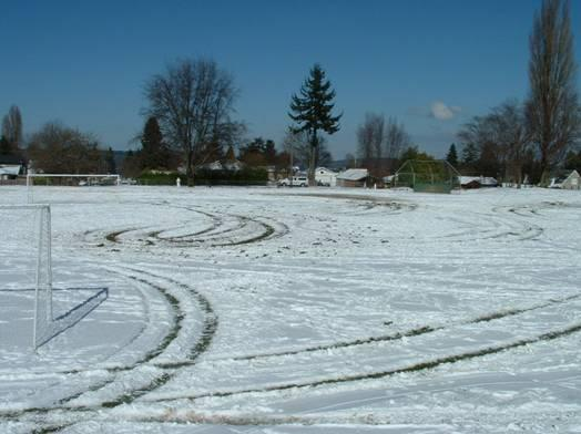 Deep ruts likely caused by a 4x4 in the sports field at Jane Clark Park