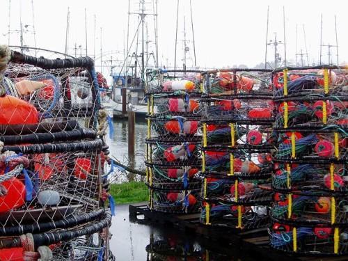 Crab pots on the docks at Newport, Oregon