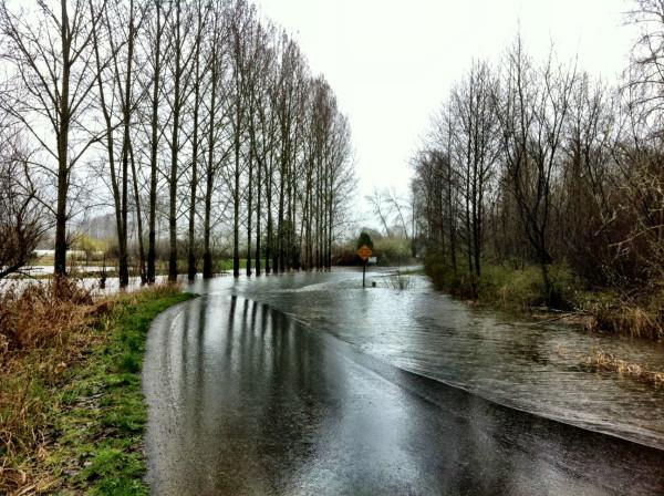 A road near the Carnation Golf Course is covered with water Thursday morning, March 31, 2011, in this Twitpic image from KING-TV's Chris Daniels.
