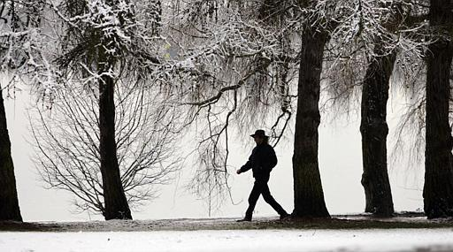 A woman strides under snow-covered branches around Seattle's Greenlake following a snowfall of several inches there overnight in 2005., a non-La Niña year.