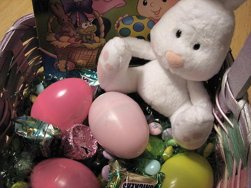 Instead of using real animals in an Easter basket, try going for a stuffed animal rabbit or duckling. Easter is April 24th this year.
