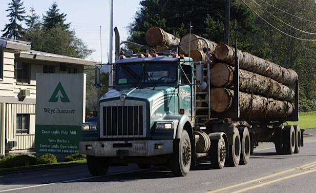A logging truck passes the Weyerhaeuser Pulp Mill on Friday Oct. 21, 2005, in Cosmopolis, in Grays Harbor County.