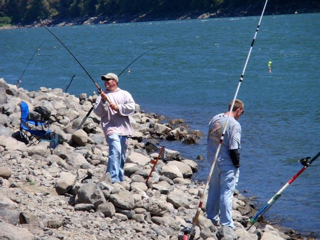 Sport fishermen cast into the Columbia River below Bonneville Dam.