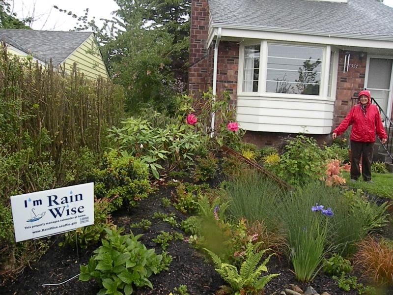 "Anne Butler, Community Education Programs Coordinator with People for Puget Sound, shows off a ""Rain Wise"" garden in Seattle's Ballard neighborhood.She says the native plants and troughs that replaced a lawn here filter runoff naturally."