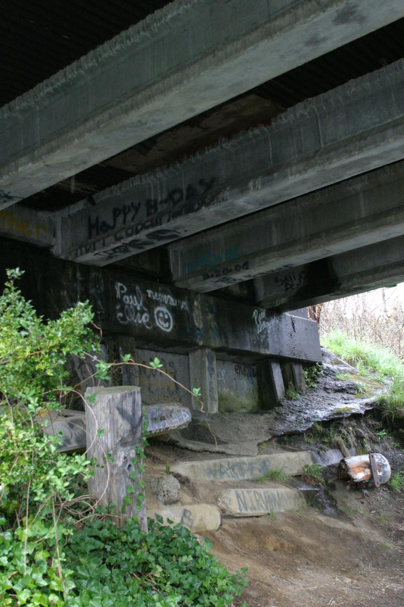Messages written to Kurt Cobain under the Young Street Bridge in Aberdeen shown from 2004. The city is considering renaming the bridge for the Nirvana front man.