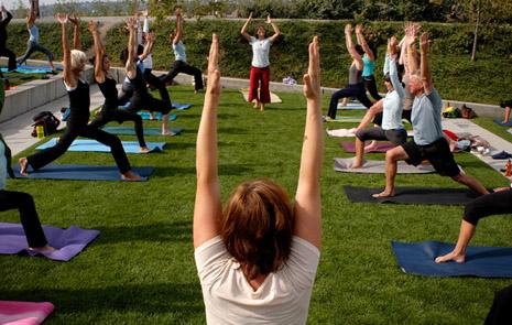 One of the many great activities to enjoy at the park is a yoga session which is available for all experience levels.