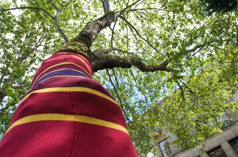 """All 27 trees, 16 lamp posts and 57 bollards in Seattle's Occidental Park have been """"yarn bombed"""" by artist Suzanne Tidwell as part of a summer art installation."""