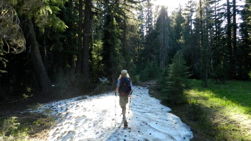 Reed Gjonnes on the Pacific Crest Trail.