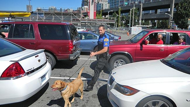 Sgt. Kerry Kintzley and his dog Sissy check cars for explosives prior to a ferry departure from Seattle's Coleman Dock