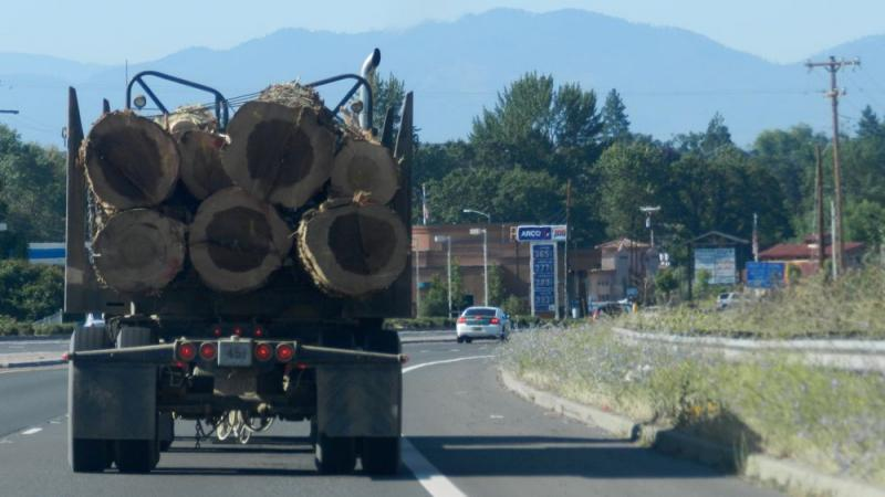 Many logs you see on highways in the Northwest might be heading to China, which has been importing unmilled timber at a much higher rate lately.