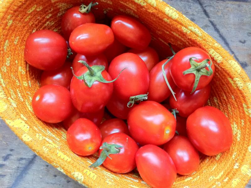 How 'bout them tomatoes?