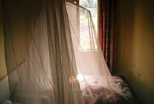 One of the tools for fighting malaria is the bed net. Has it been successful?