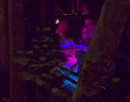 Colors change throughout the 15 minute, repeating program at Ladder Creek Falls