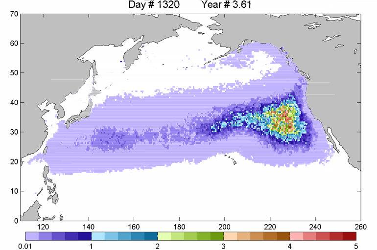 Model of the debris from the Japanese tsunami reaching the NW coastline.